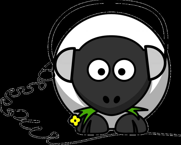 sheep-158247_1280